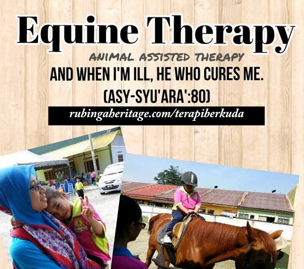 equinetherapy.png